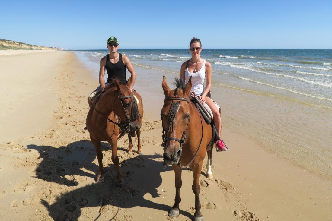 andalousie parc donana matalascanas cheval dunes