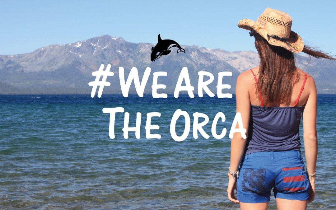 Sauver les orques résidentes du Sud