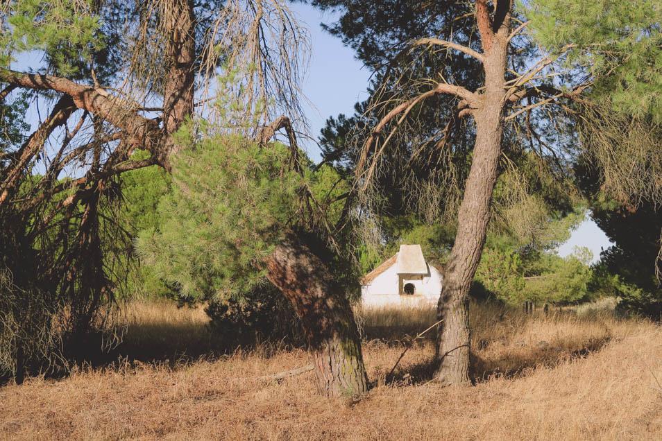 Petite cabane au parc national Donana