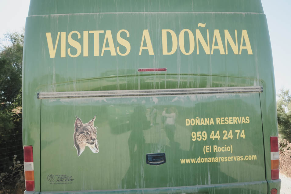 Visitas a Donana