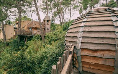 Nuit insolite à Marseille : la cabane dans les arbres
